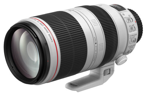 Canon EF 100-400mm f/4.5-5.6L IS II USM #7