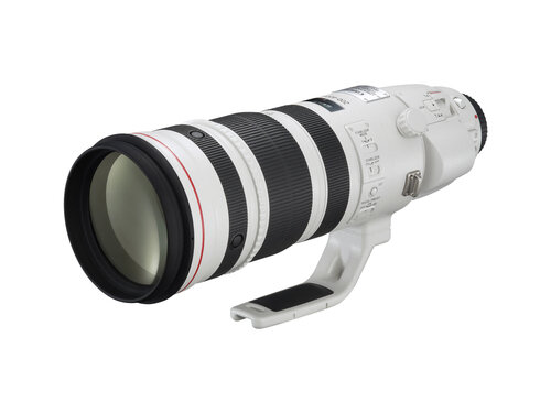 Canon EF 200-400mm f/4L IS USM Extender 1.4X - 3
