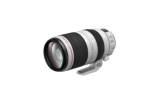 Canon EF 100-400mm f/4.5-5.6L IS II USM #2
