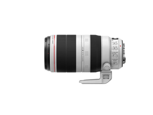 Canon EF 100-400mm f/4.5-5.6L IS II USM #4