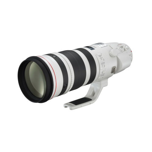Canon EF 200-400mm f/4L IS USM Extender 1.4X - 1